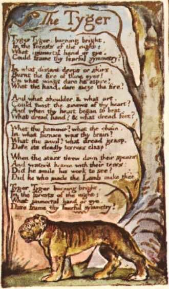&quot&#x3B;THE TYGER&quot&#x3B; WILLIAM BLAKE