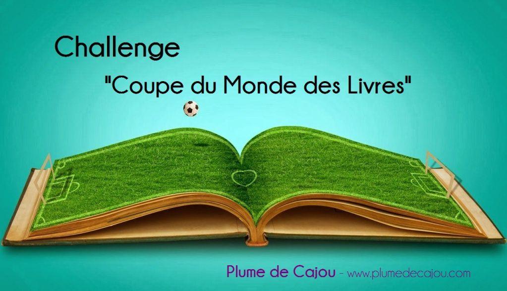 Coupe du monde des livres challenge - Quitte moi pendant la coupe du monde ...