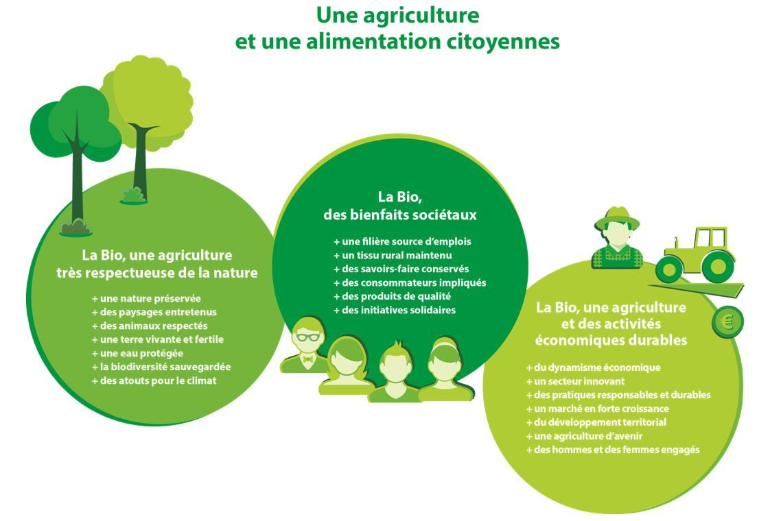 L agriculture biologique naturellement respectueuse de l for L agriculture