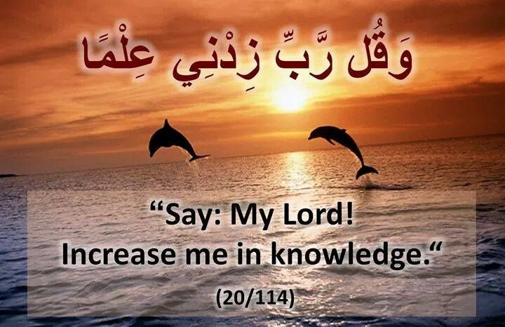 Al Quran, Hadith and Islamic Quotes (4) - Message of Islam
