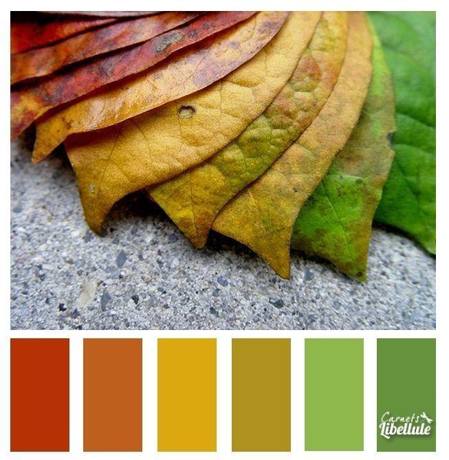 Eloge des couleurs