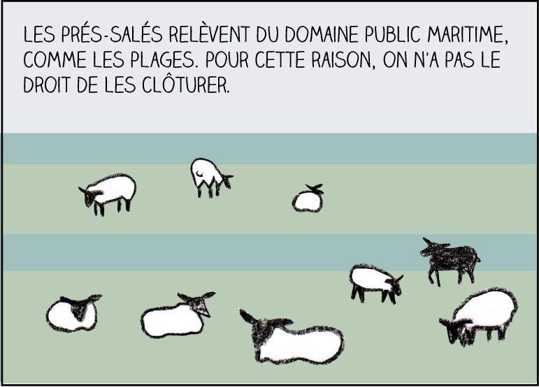 Crayons &amp&#x3B; moutons