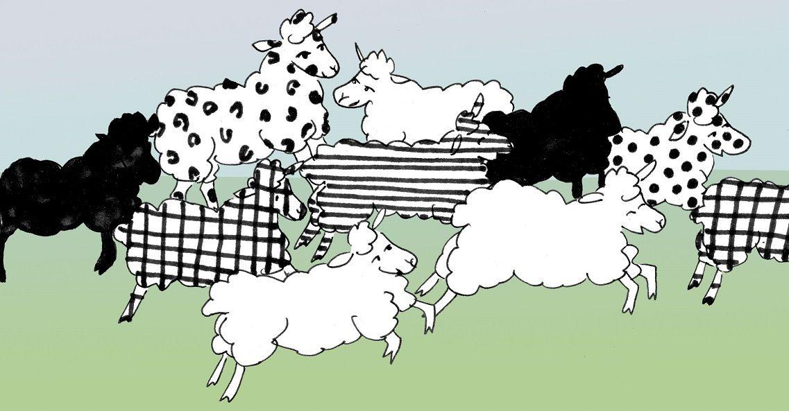 La Cotentine Moderne et l'esprit terroir