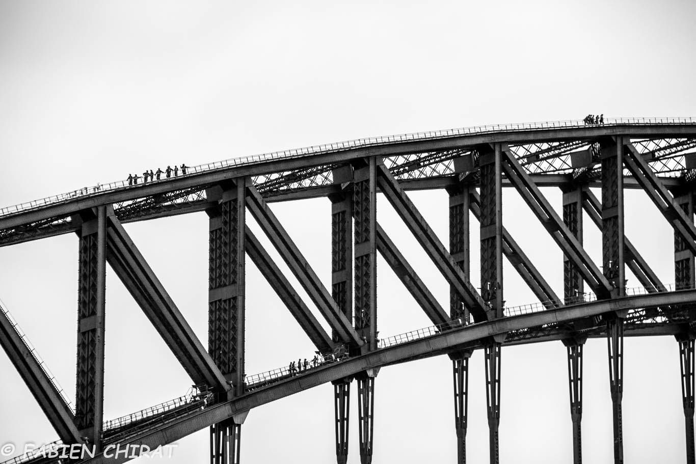 Quelques funambules sur l'Harbour bridge