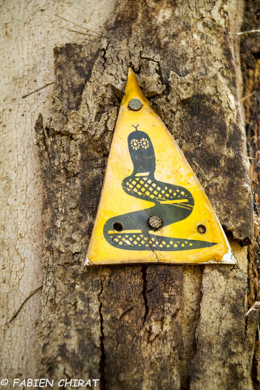 Le Bibbulmun track trek de 950 km entre Perth et Albany