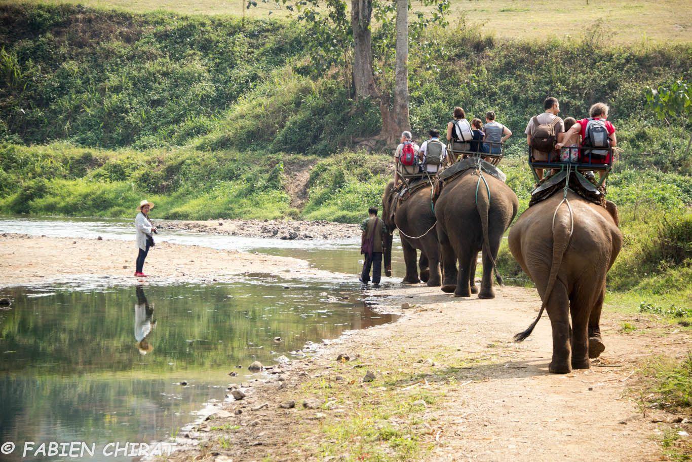 14 jours en famille en Thaïlande.
