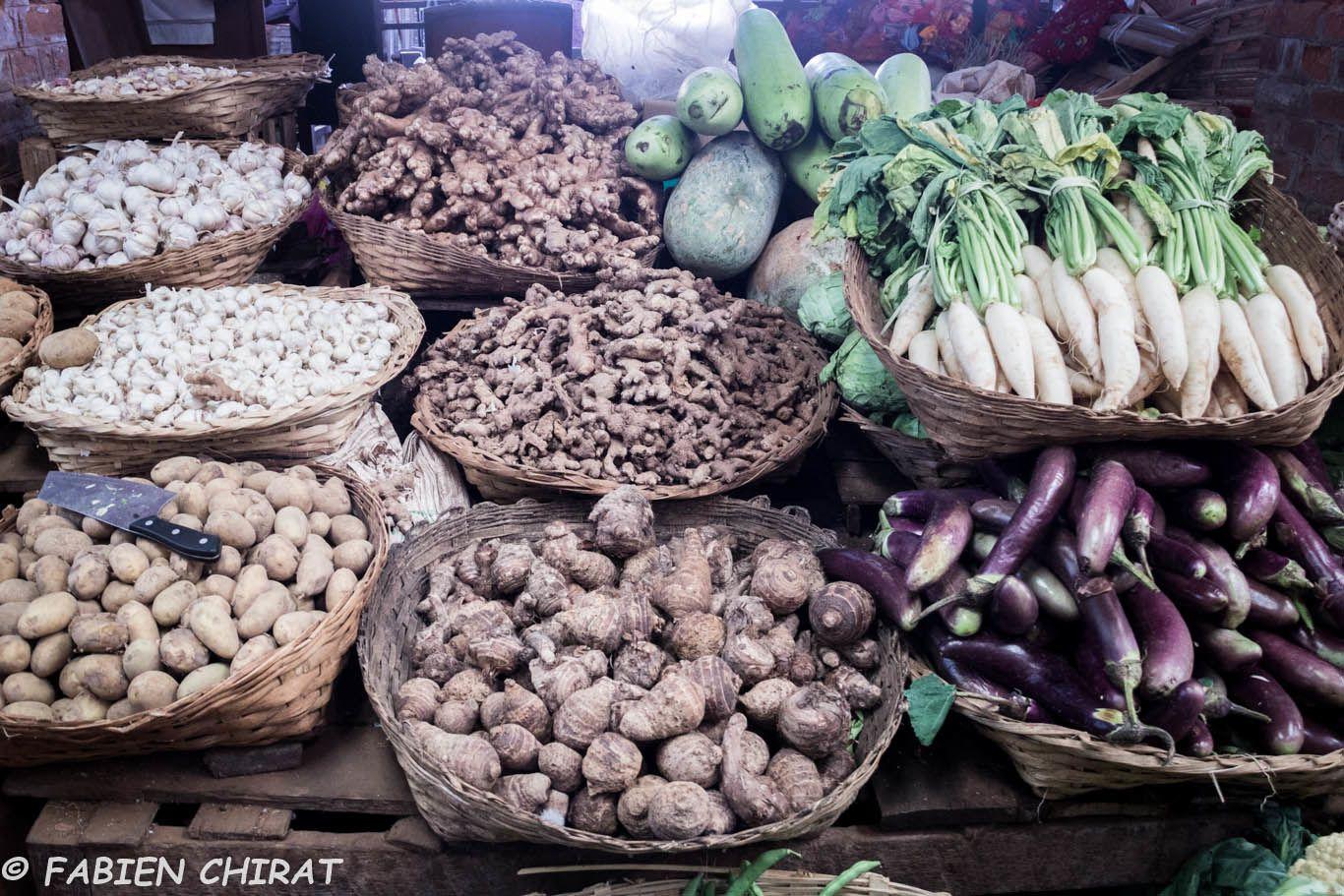 Racines et légumes.
