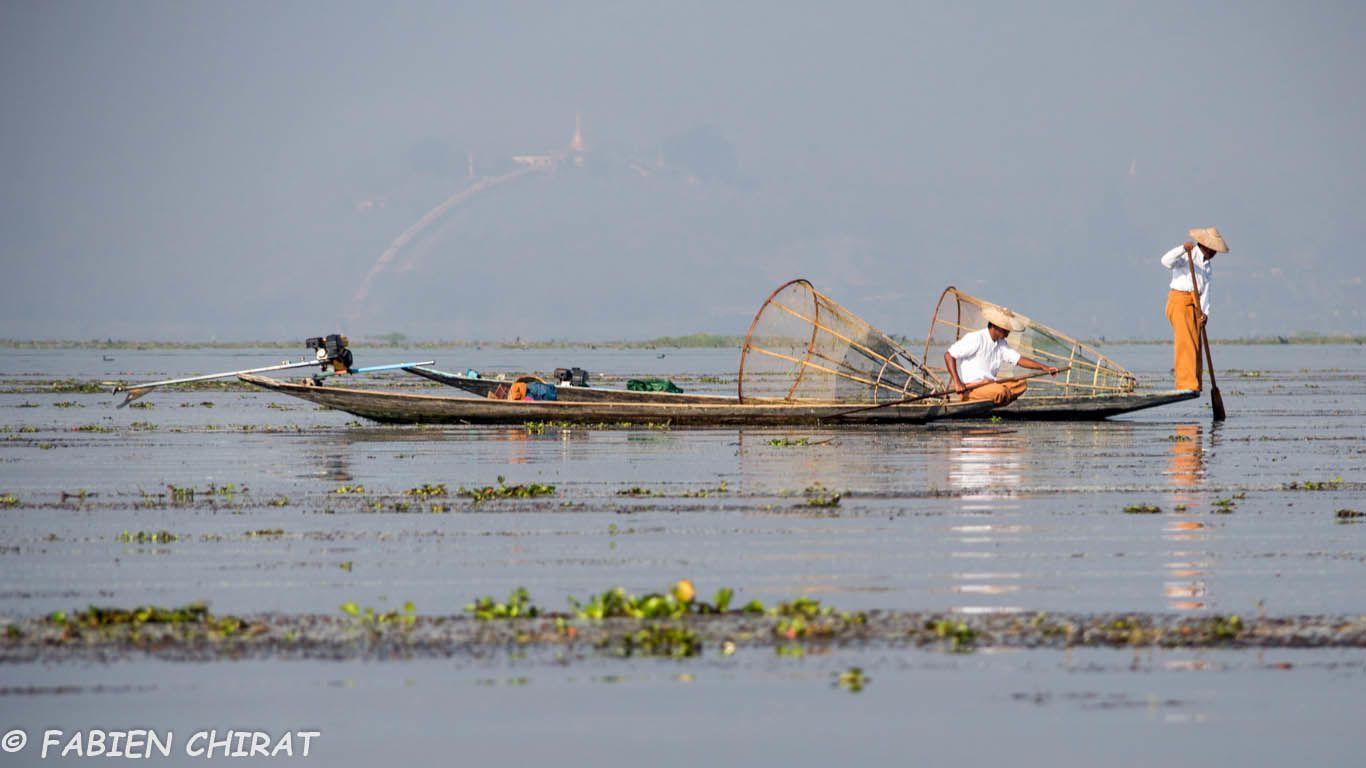Pêcheurs à la nasse du lac Inle.