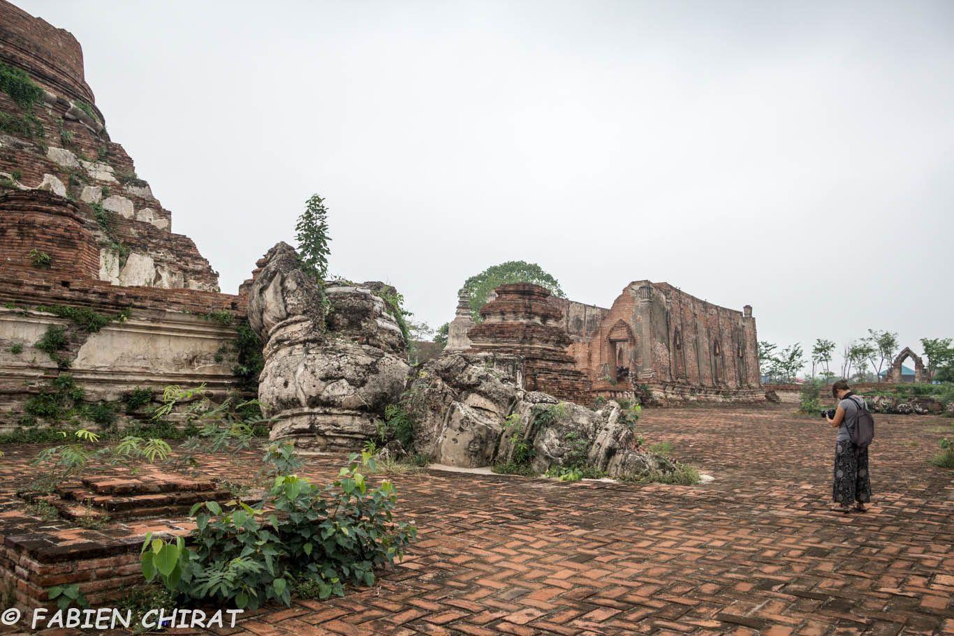 Temple Wat Kudidao. Très beau mais abrite une horde de chiens agressifs moins sympas que les chats.