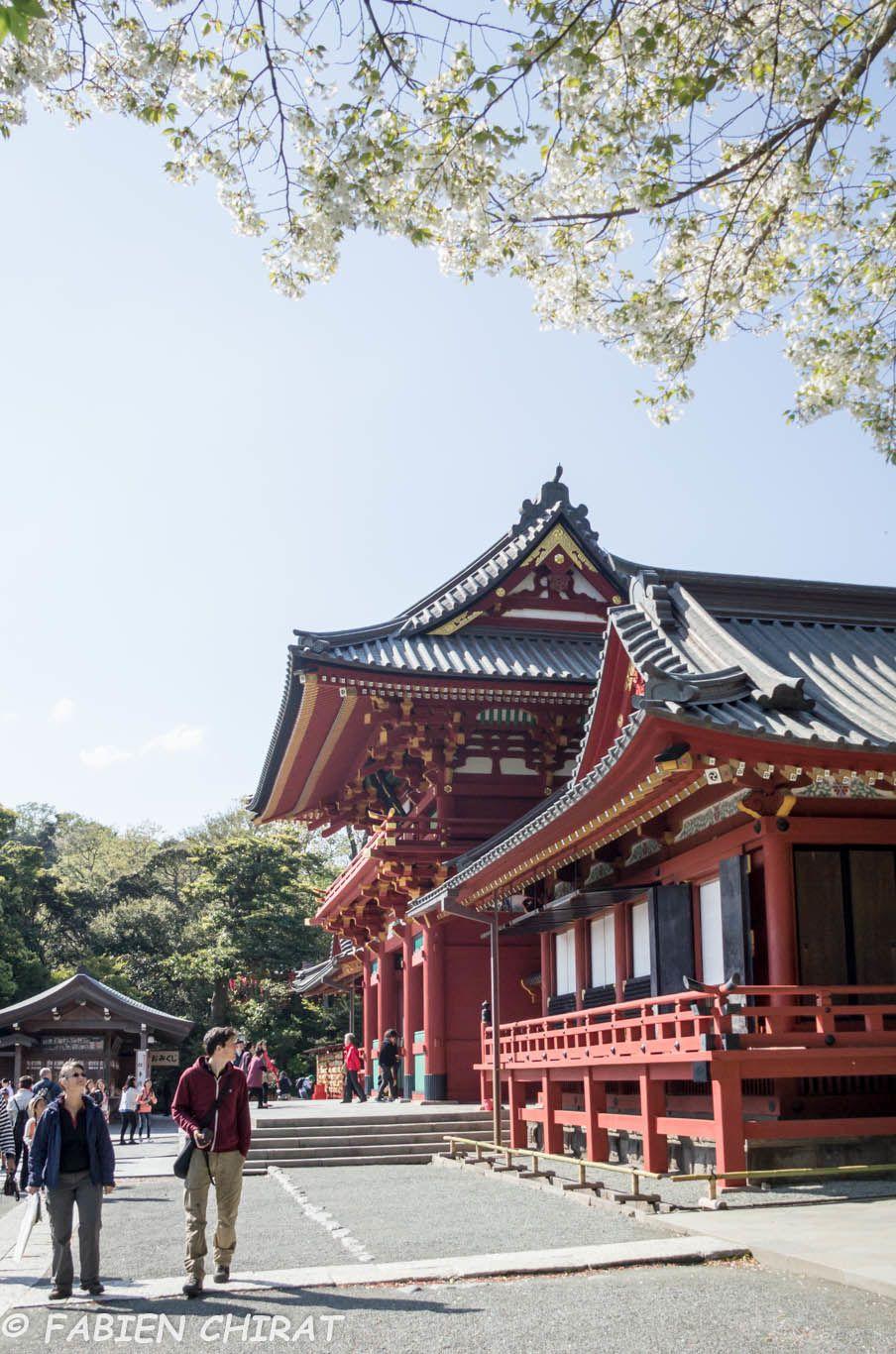 Sanctuaire Tsurugaoka Hachimangu avec Valérie et Olivier.