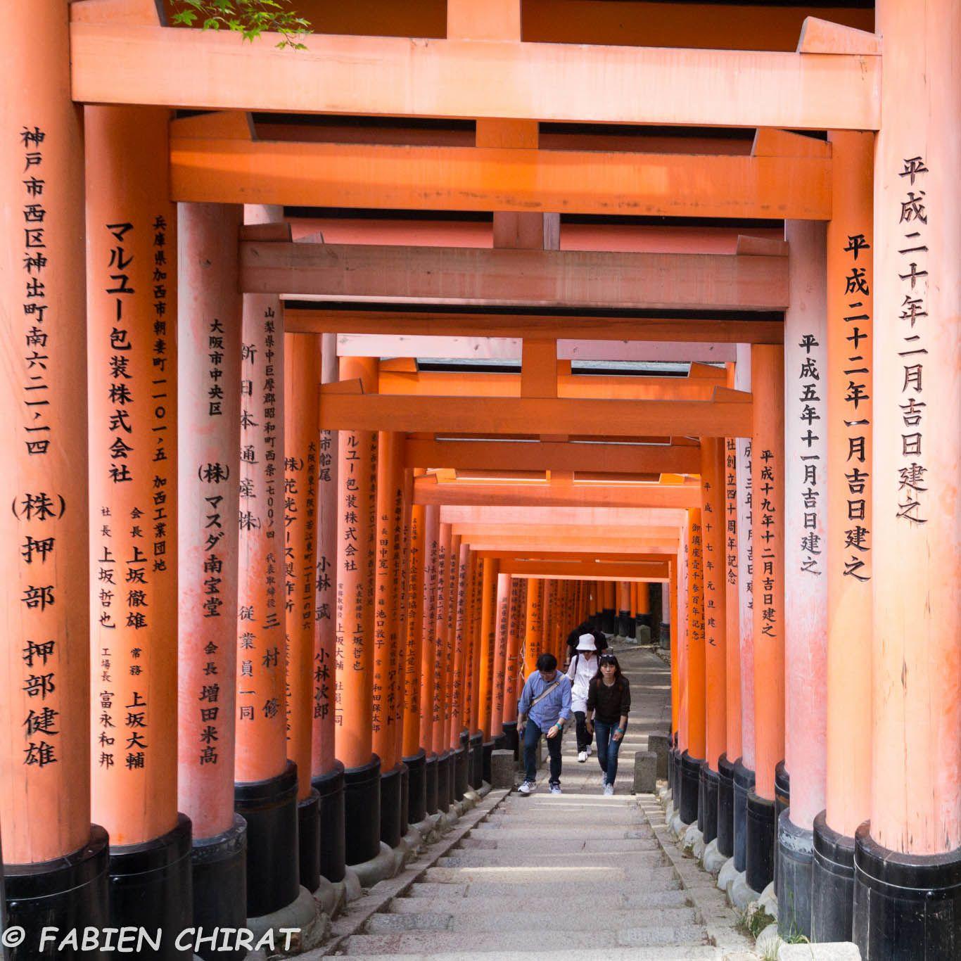 Kyoto: Fushimi Inari Shrine &quot&#x3B;une étude en rouge&quot&#x3B;