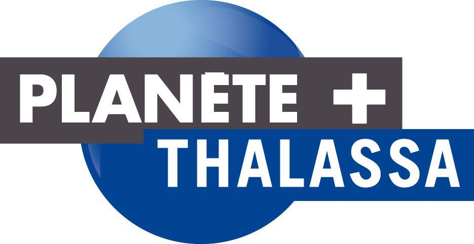 En avril, Planète+Thalassa nous fait découvrir les secrets du tournage des Dents de la mer