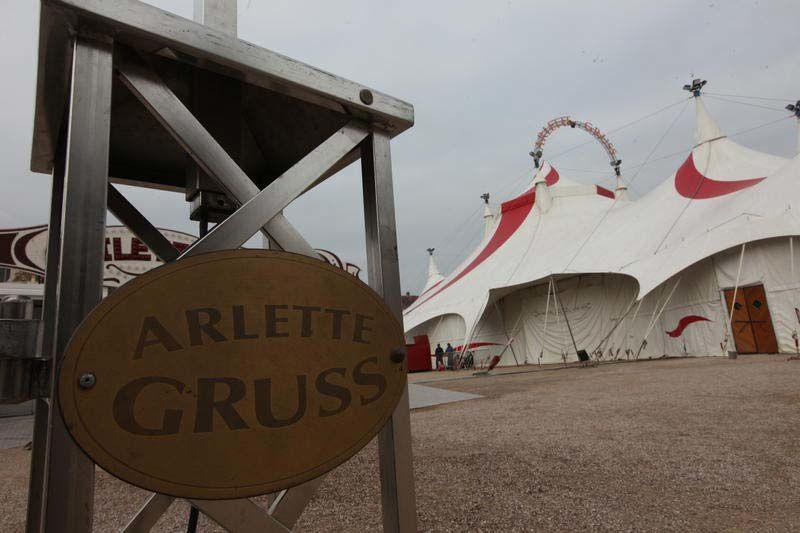 &quot&#x3B;Une saison au cirque&quot&#x3B;, nouvelle série du réel dès le 17 novembre sur France 4