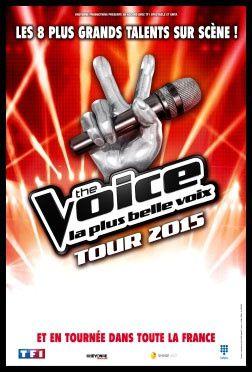 Coup d'envoi de The Voice Tour 2015 le 29 mai prochain (dates)