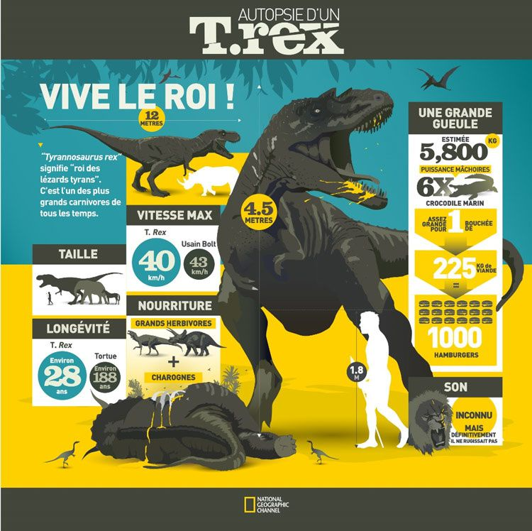 En juin, National Geographic Channel vous invite à assister à l'autopsie d'un T.Rex