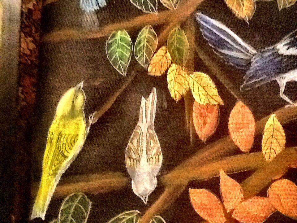 Fox and birds