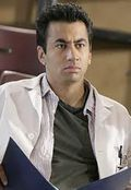 Kal Penn as Lawrence Kutner