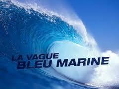 Elections dés le 6 décembre: transformons la vague patriote en tempête Bleu Marine !