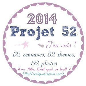 # Projet 52 - Semaine 20 - Animaux