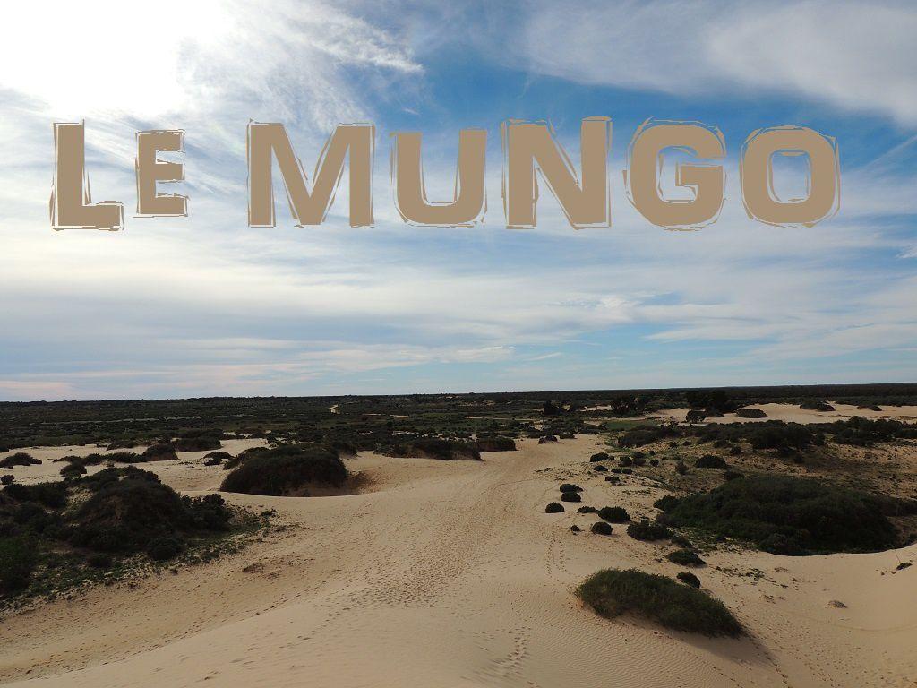 Le Mungo