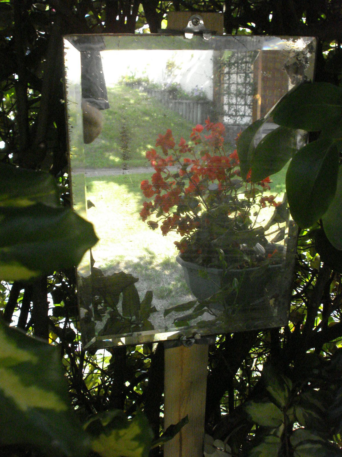 Fen tre ouverte sur le jardin dame nature du jardin a la for Cuisine ouverte sur jardin