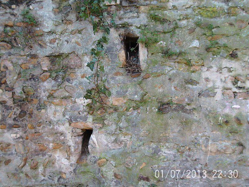 Histoires de murs
