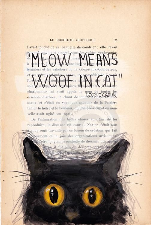 &quot&#x3B;Meow means woof in cat&quot&#x3B;, George Carlin