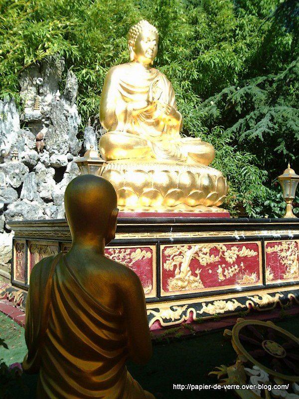 Dragons, tortues, bonsaïs ... c'est bouddhique