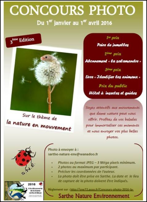 Concours photo S.N.E.
