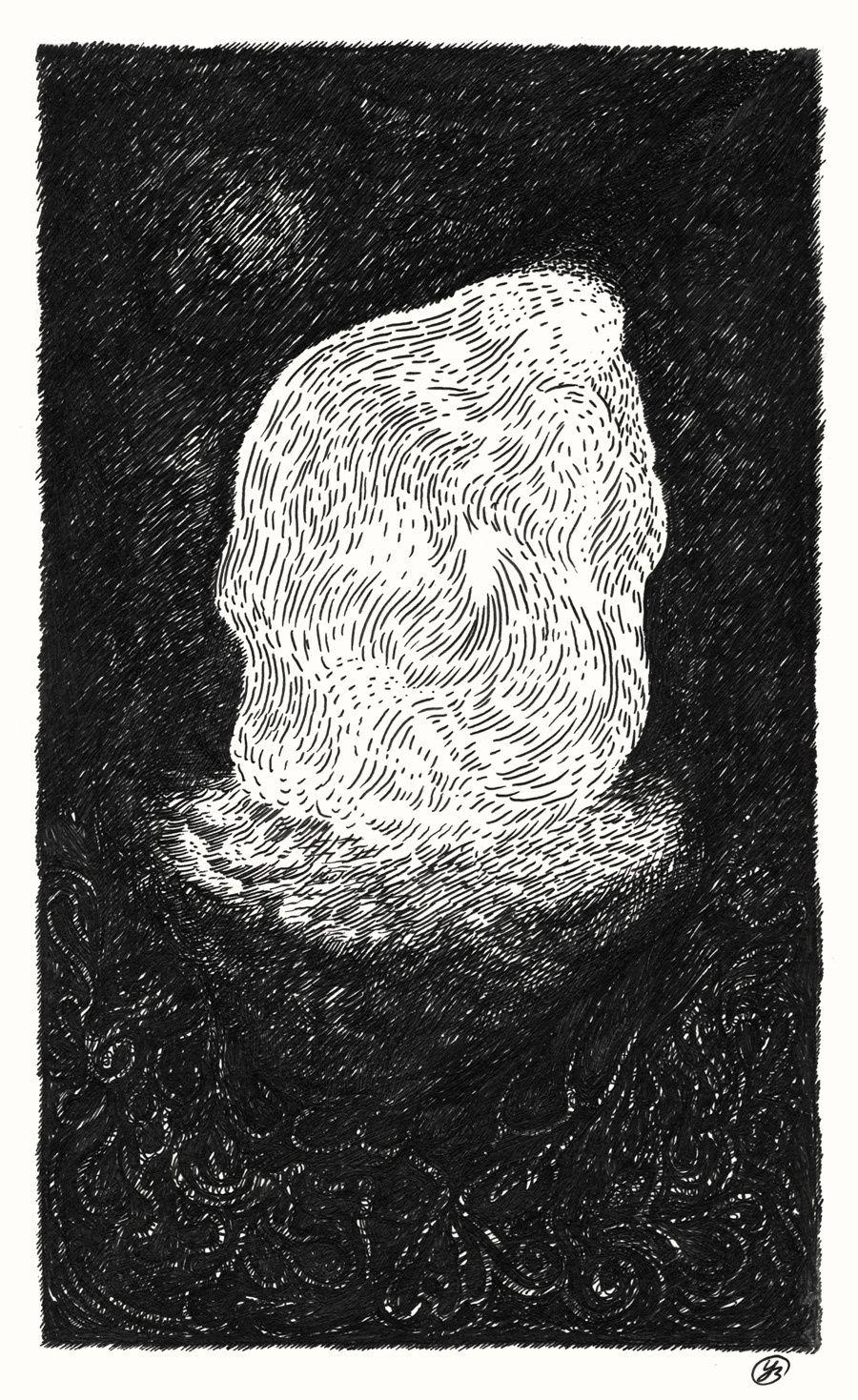 Mutis Liber, encres sur papier, 12,8 x 21 cm, 2012-2014