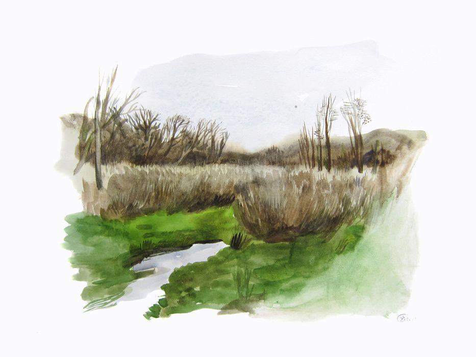 Aquarelles dans le marais du Quellen, 36 x 48 cm, Mars 2012