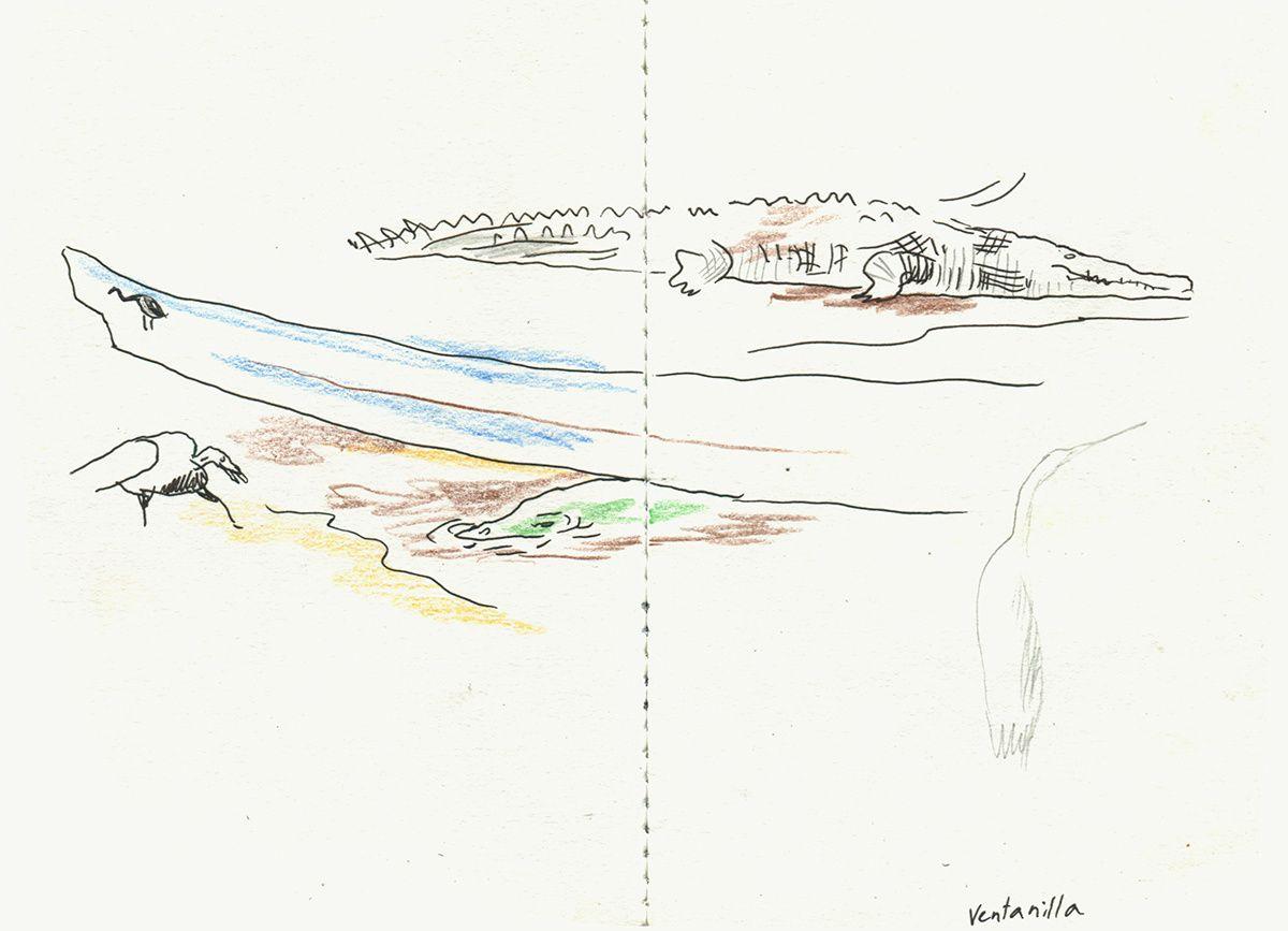 Aquarelles format 29,7 x 21 cm / Croquis crayon sur carnet 10 x 15 cm
