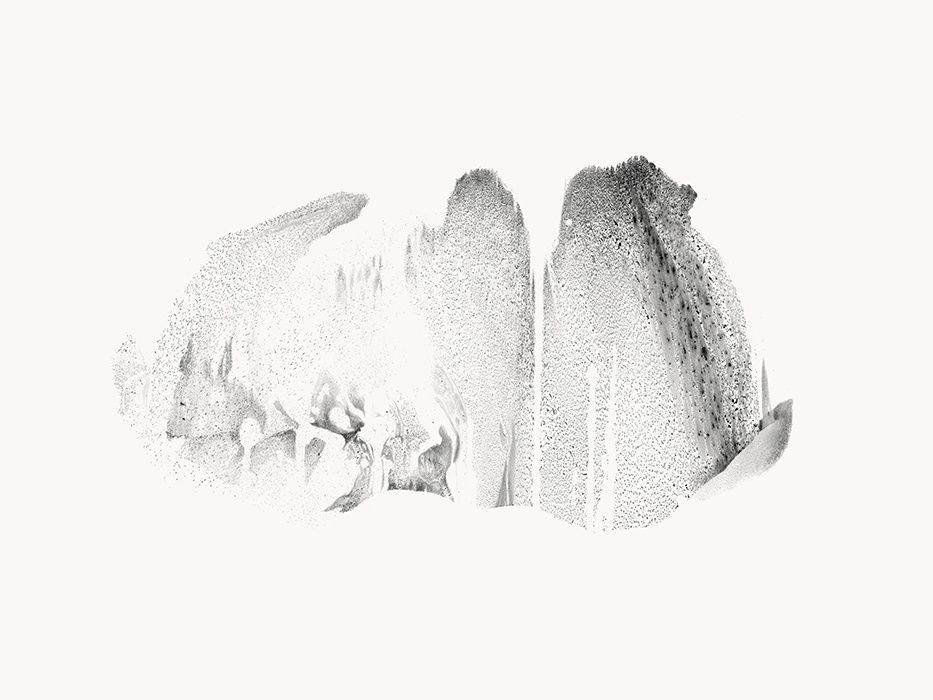 Sources, encre de chine sur papier, 56 x 76 cm, Yann Bagot 2015.