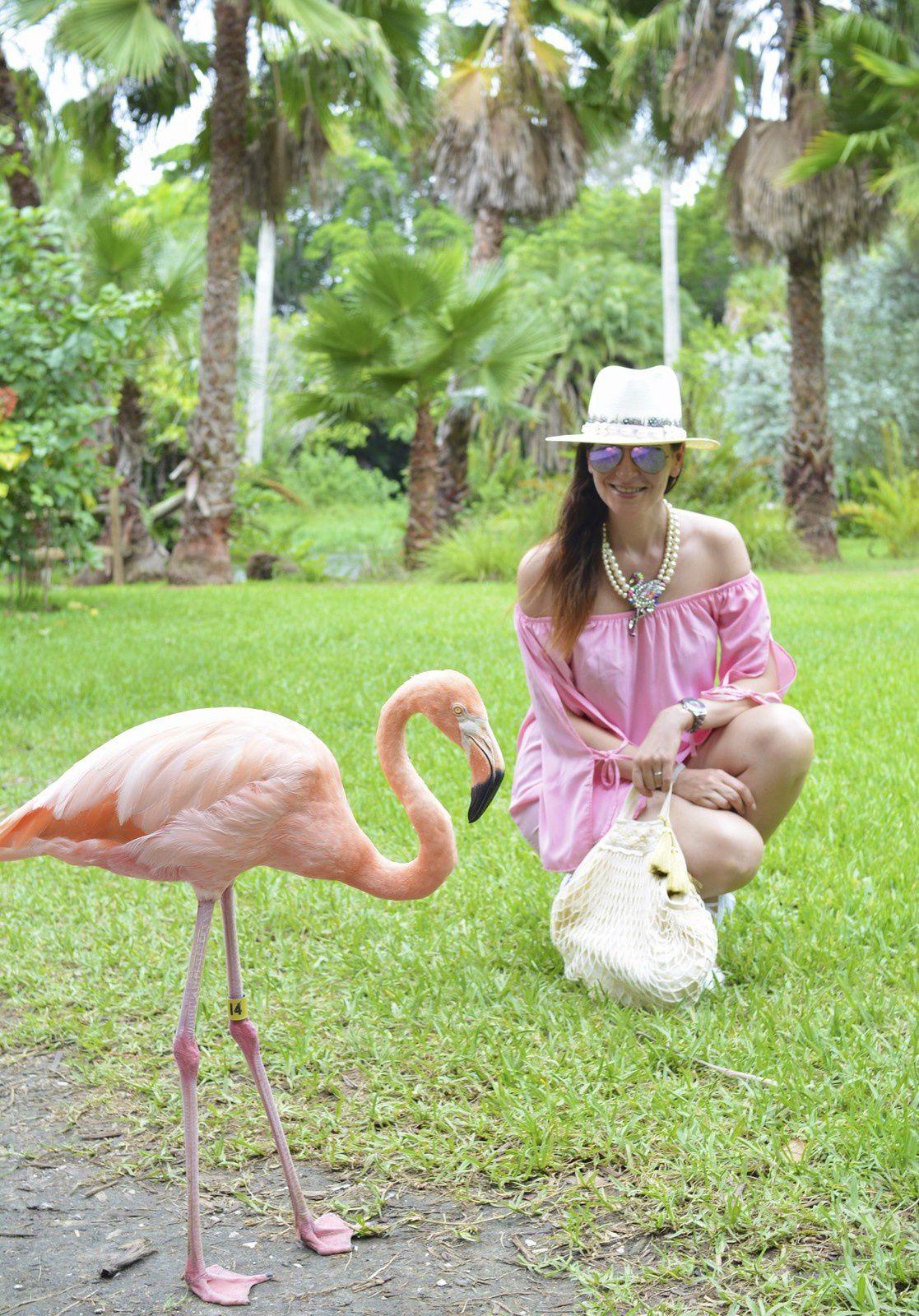 Flamingo Style 💗