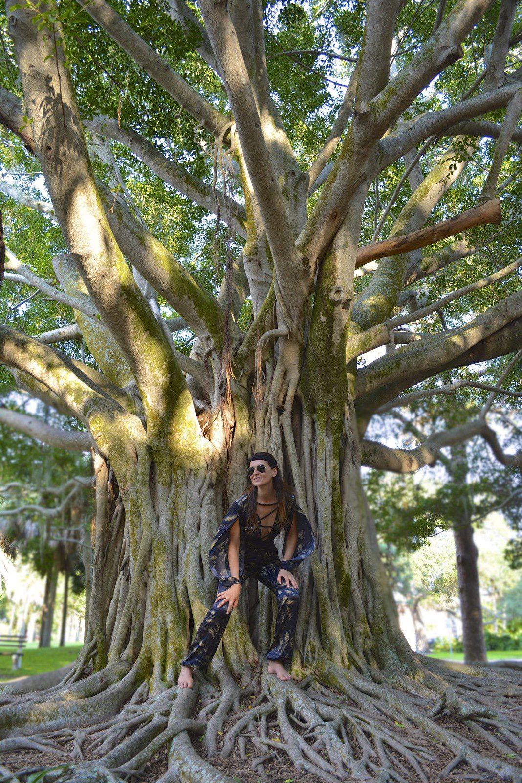 Jungle Divinity 🐍