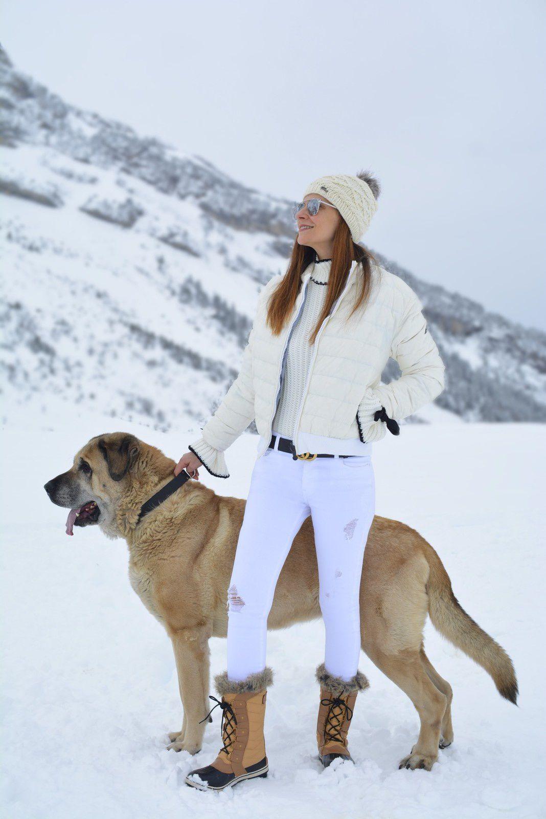Blanc comme neige ❄️