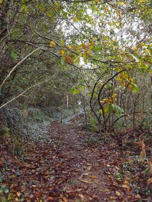 3 ème Trail de la Vallée des Moulins