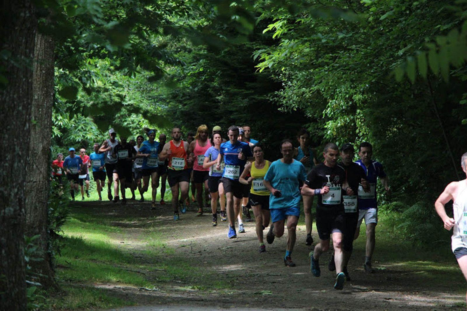 Trail de l'Odet 2016
