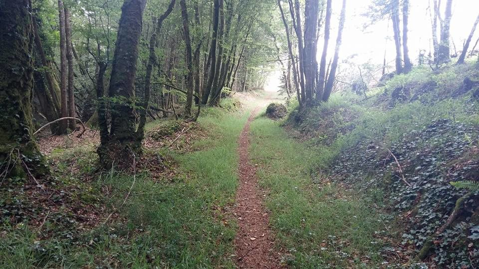 1 er Trail de Guerlesquin