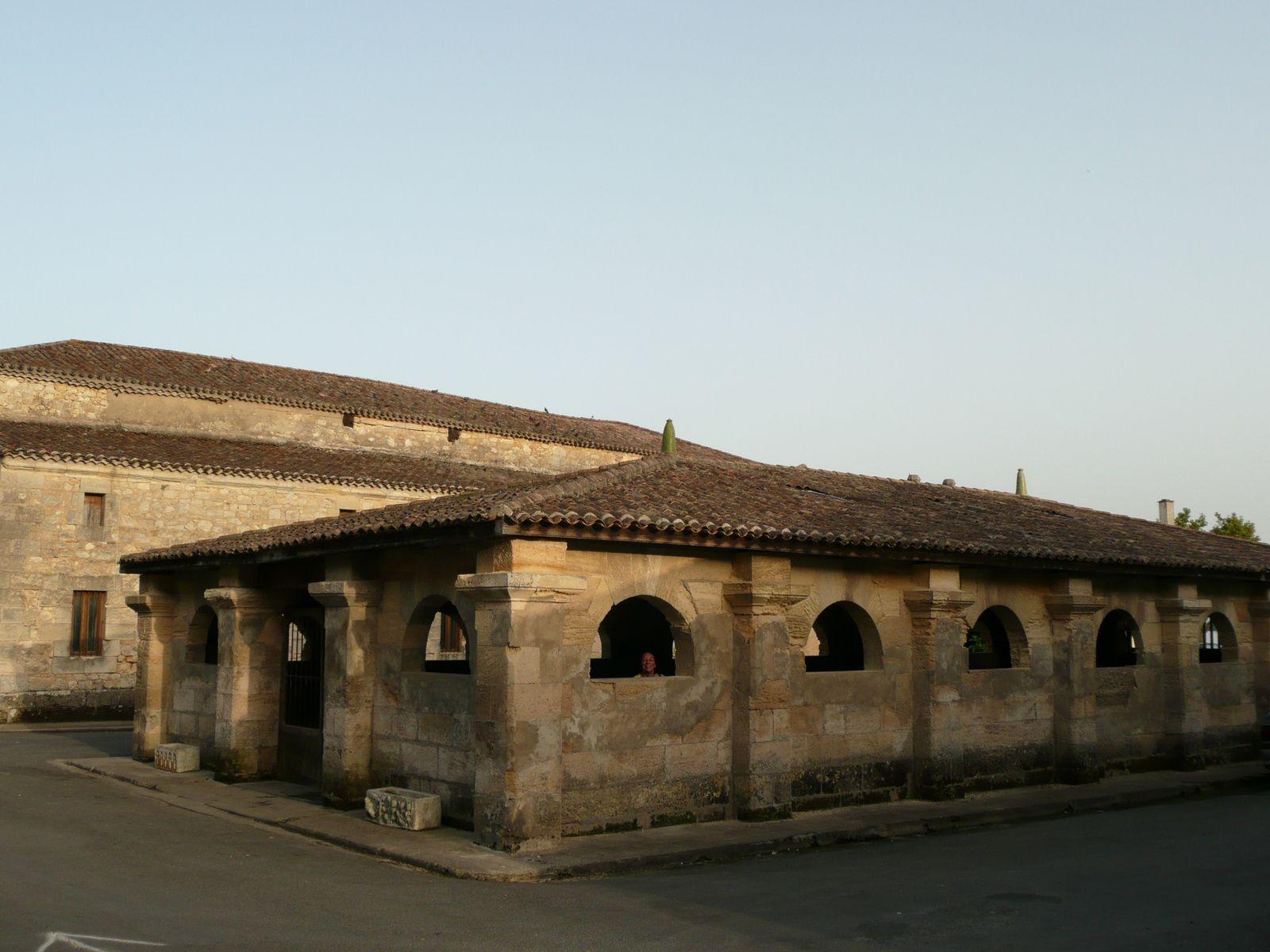 33 - Bourg sur Gironde : Ici le lavoir ... Magnifique et très frais !