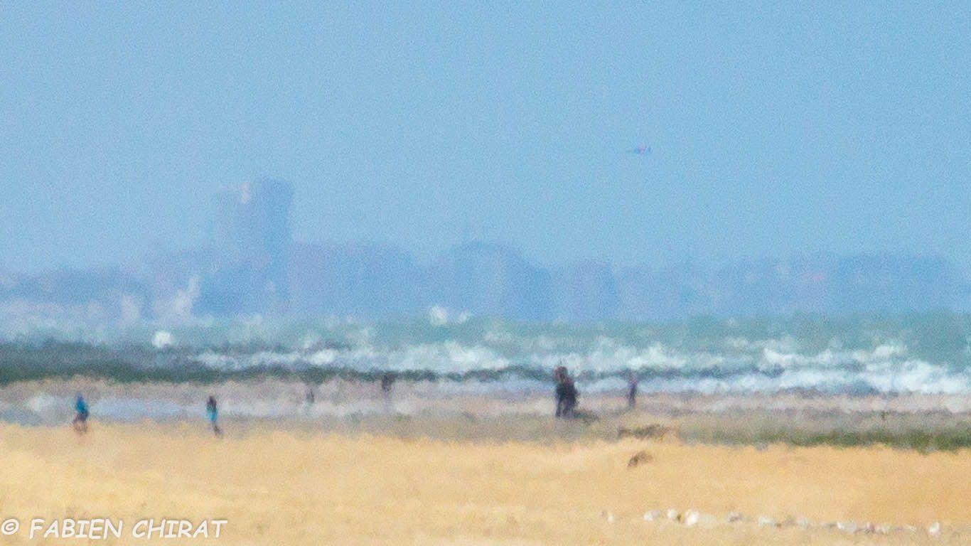 Série &quot&#x3B;Impressionnisme à Ostende&quot&#x3B;