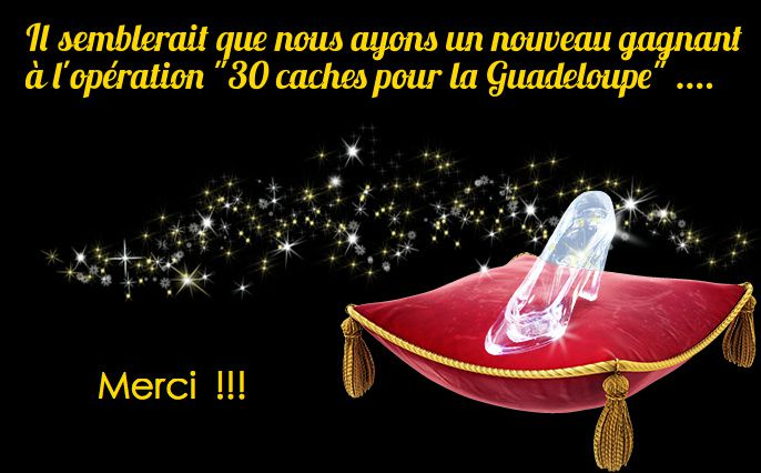 cendrillon971 is the new winner ...