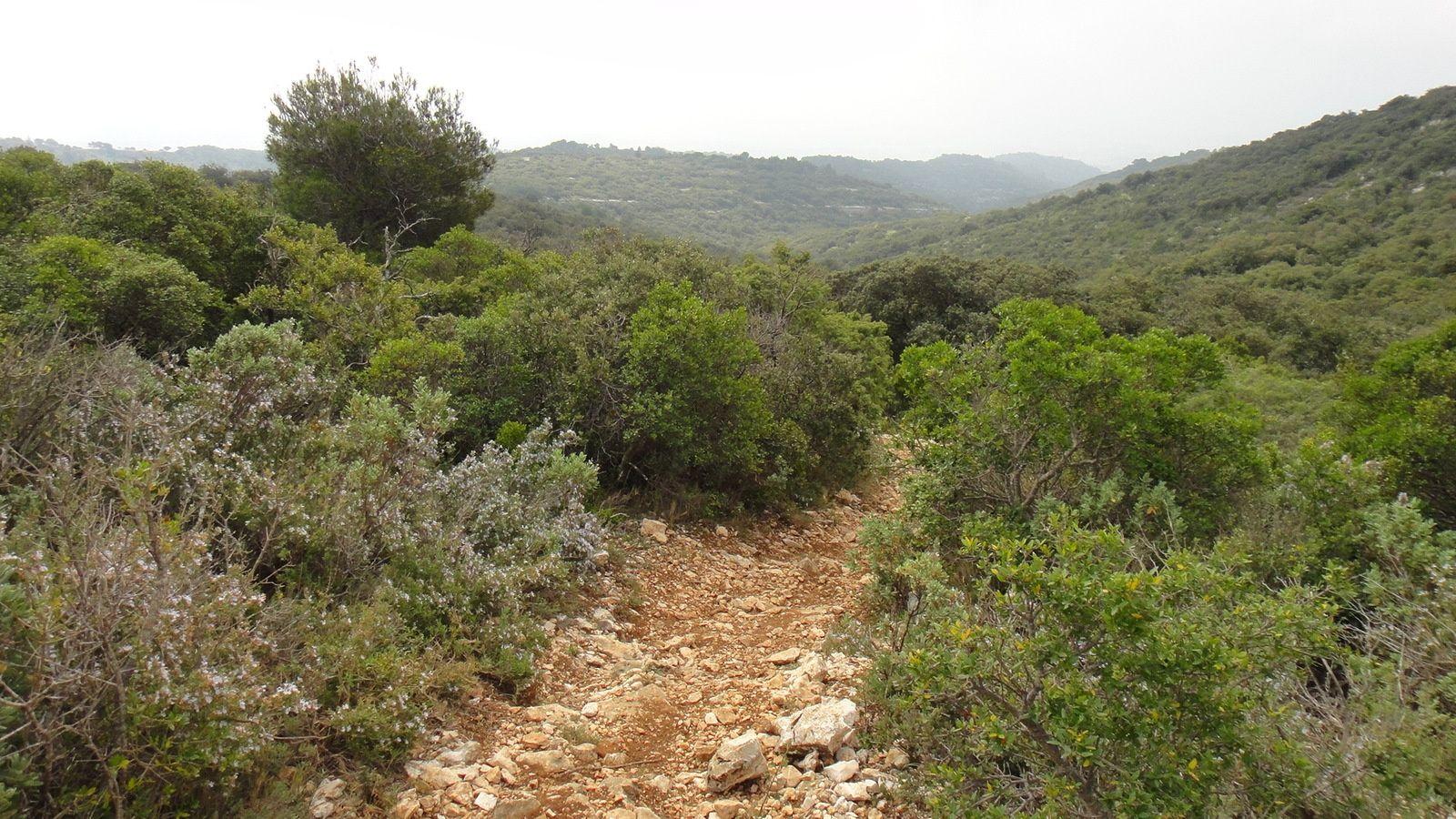 La Pouraque (617m) par la Grande Combe et le chemin des Baumions