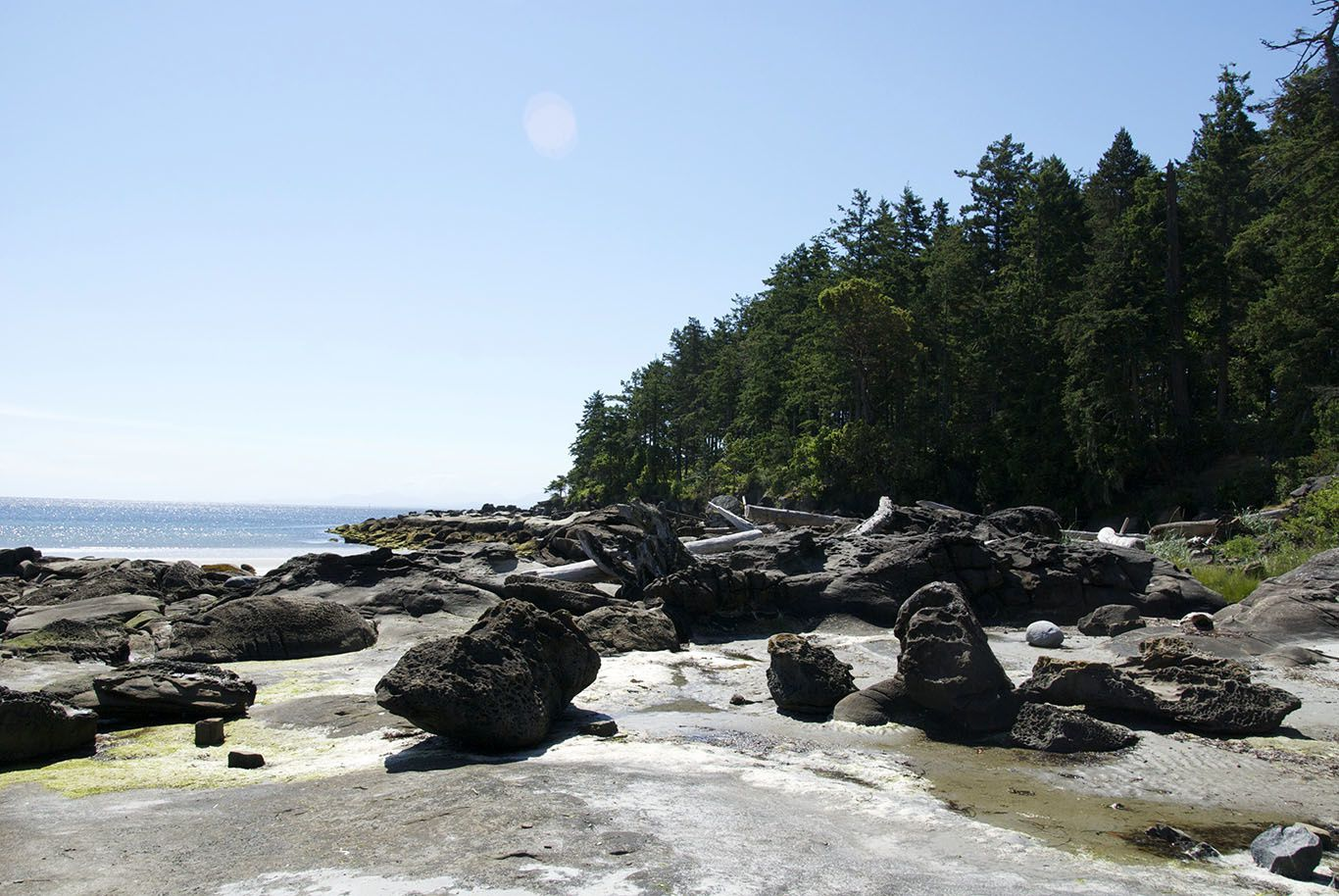 Hornby Island: a lovely hippie island with a fantastic host