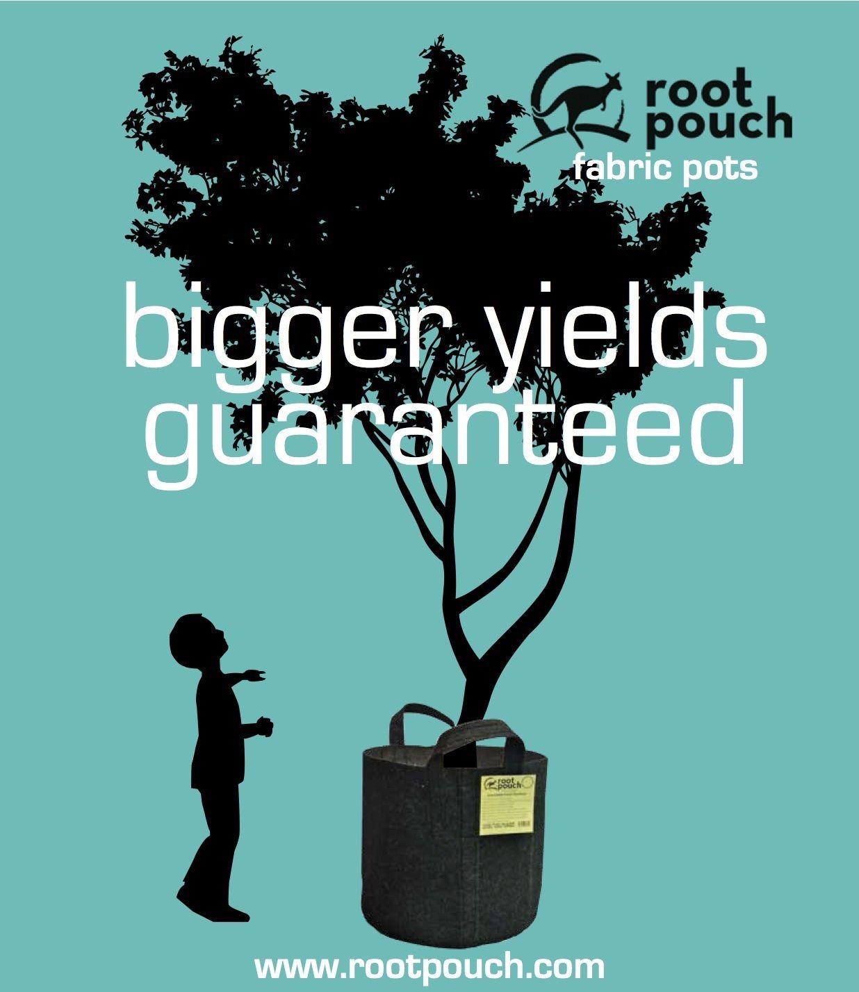 20 Root Pouch vert poignées Géotextile Smart potager grow déco container 18L