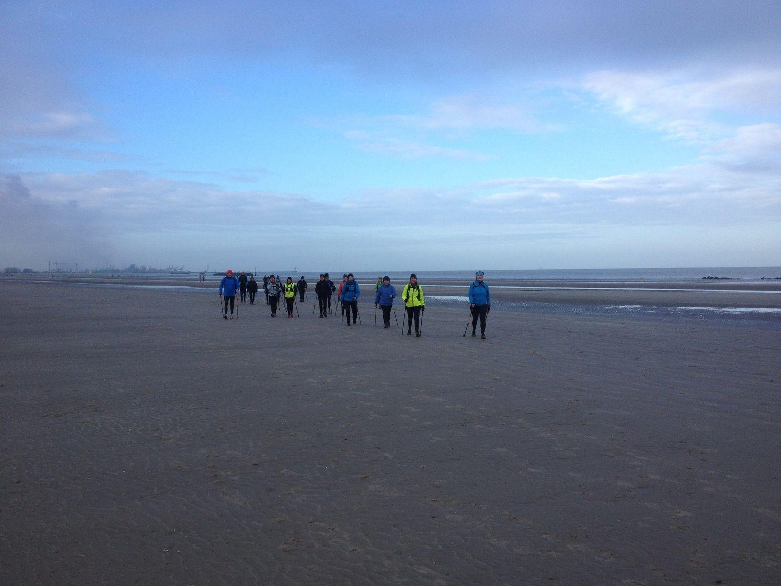 Sortie du 25 janvier sur la plage ...
