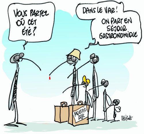 Stop aux moustiques - Homemade