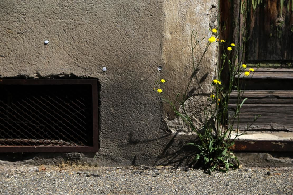 © Annie Patelli / Rue F.Suisse
