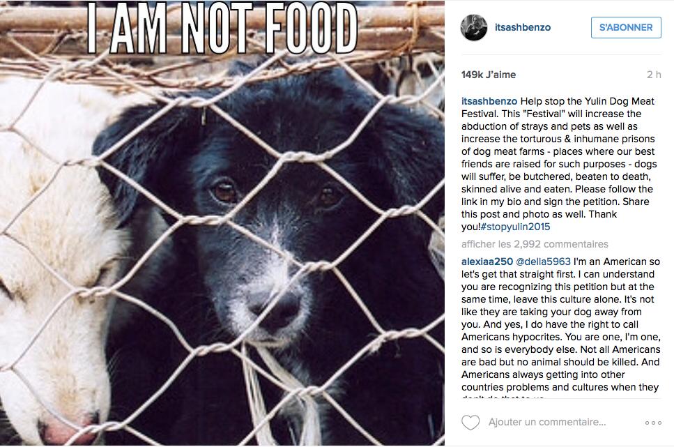 L'actrice Ashley Benson s'insurge contre le festival de viande de chien et de chat de Yulin