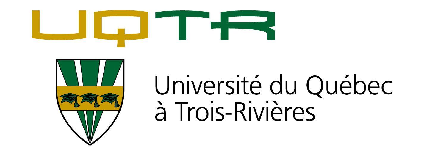 Jean-Philippe Gauthier, M. en études psychosociales, Doctorant en sciences sociales à l'UFP et Professeur à l'UQAR.